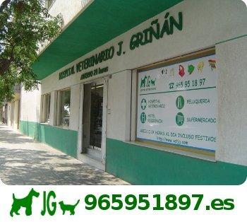 hospital veterinario JG